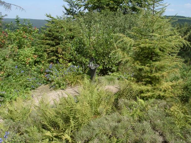 Botanischer Garten, D-01773 Altenberg OT Schellerhau