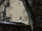 Gatower Str. 314, 14089 Berlin - Spandau