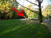 Englischer Garten, 10557 Berlin, OT Tiergarten