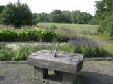 Treptower Park, Rosengarten, D-12435 Berlin - Treptow
