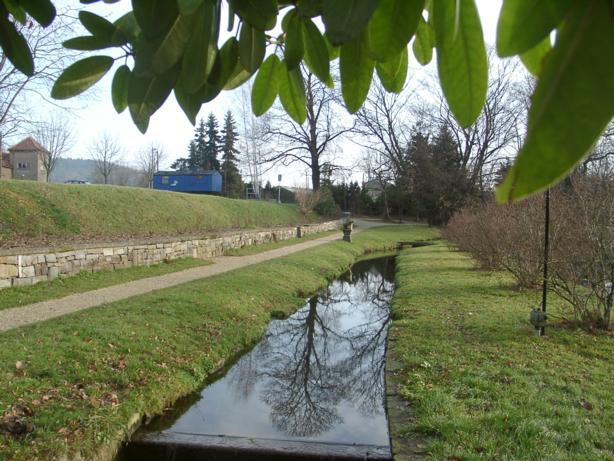 Park Bischheim, Nähe Teichufer (near ponds shore), D-01920 Haselbachtal OT Bischheim-Häslich