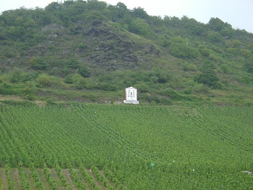 Weinlage an der B 416, D-56829 Pommern